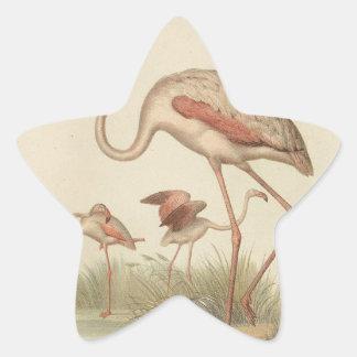 Flamingo bingo star sticker