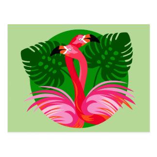 Flamingo Birds Postcard