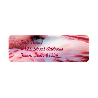Flamingo Feathers Mailing Label Return Address Label