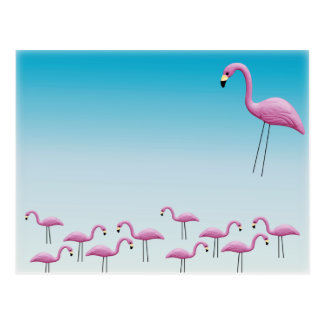 Flamingo Flocking Postcard