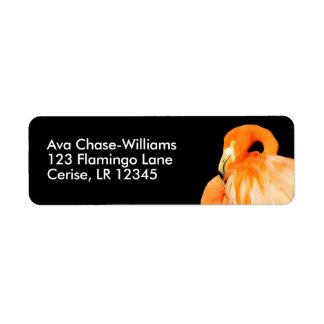 Flamingo in the Summer Sun Return Address Label