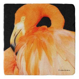 Flamingo in the Summer Sun Trivet