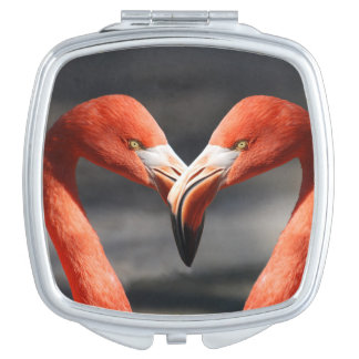 Flamingo Love Vanity Mirror