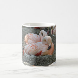 Flamingo on Nest Classic White Coffee Mug