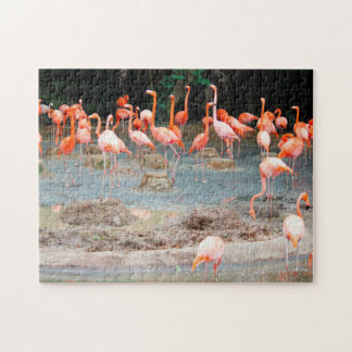 Flamingo Pond Singapore. Jigsaw Puzzle