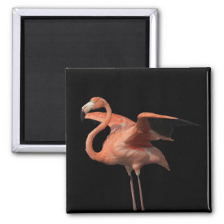 flamingo pose magnet