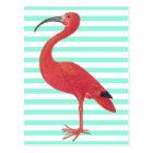 Flamingo & Teal stripes - Fine Art Postcard