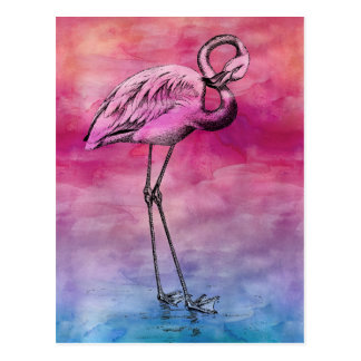 Flamingo Watercolor Vintage Pink Flamingos Retro Postcard