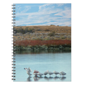 Flamingos at dusk notebook