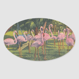 Flamingos at Miami, Florida Oval Sticker