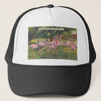 Flamingos at Miami, Florida Trucker Hat