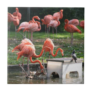 Flamingos by the Pond Ceramic Tiles