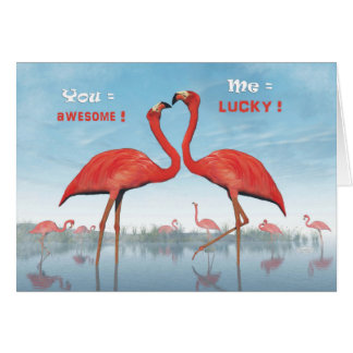 Flamingos courtship : you = awesome, me = lucky card