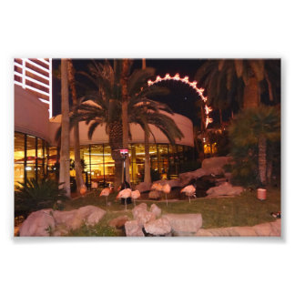 Flamingos, Las Vegas Photo Print