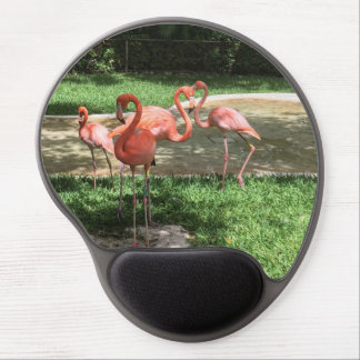Flamingos on the Riviera Maya in Mexico Gel Mouse Pad