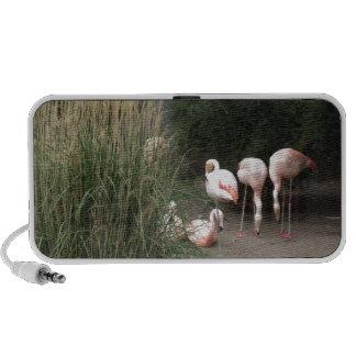Flamingos Mini Speaker