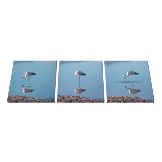 Flamingos triptych canvas print