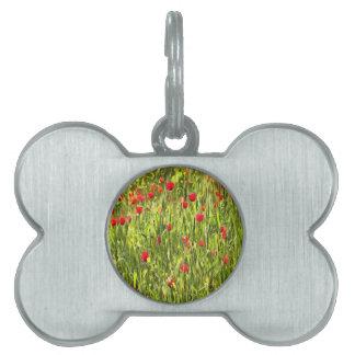Flanders Poppies Pet Name Tag