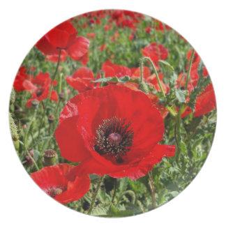 Flanders Poppy Plate