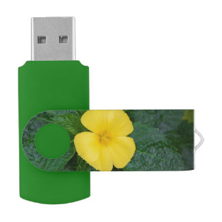 Flash Drive - West Indian Holly Swivel USB 2.0 Flash Drive