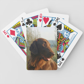 Flat Coated Retriever dog beautiful photo portrait Bicycle Playing Cards