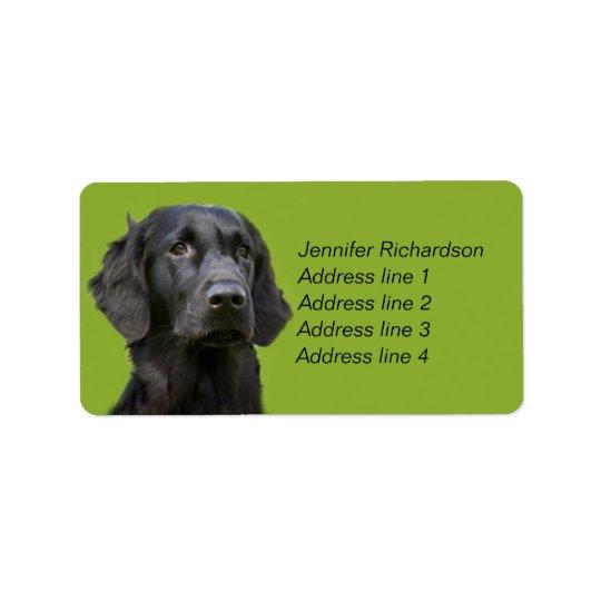 Flat Coated Retriever dog, black custom
