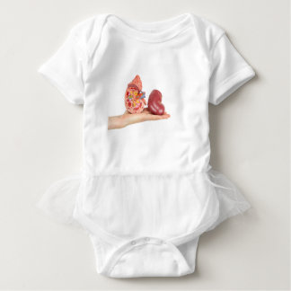 Flat hand showing model human kidney baby bodysuit