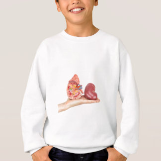 Flat hand showing model human kidney sweatshirt