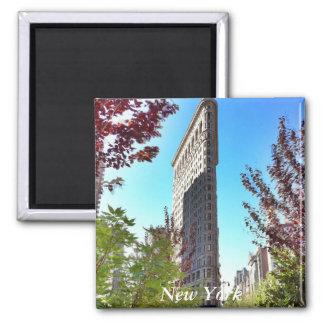 Flat iron, New York Magnet