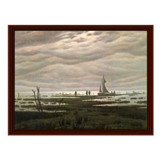 Flat Landscape At The Bay Of Greifswald Postcard
