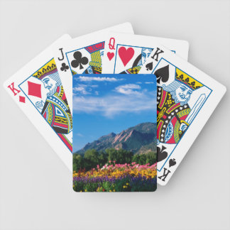 Flatirons and Flowers, Boulder Colorado Bicycle Playing Cards