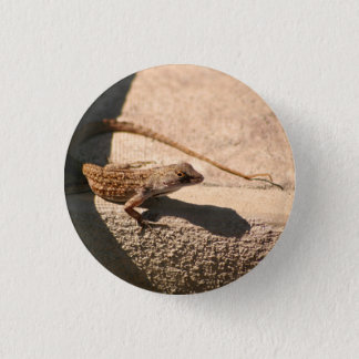 Flatrock Frank pin