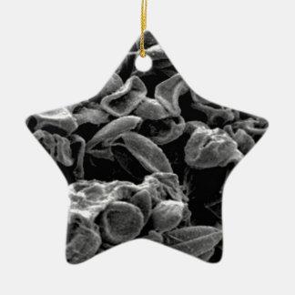 flattened cells capture ceramic ornament