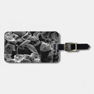 flattened cells capture luggage tag