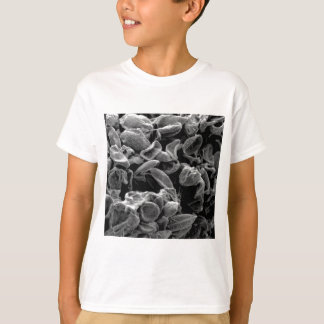 flattened cells capture T-Shirt