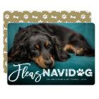 Fleas Navidog Brush Dog Lover Holiday Photo Card