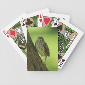 Fledging Chipping Sparrow Bicycle Playing Cards