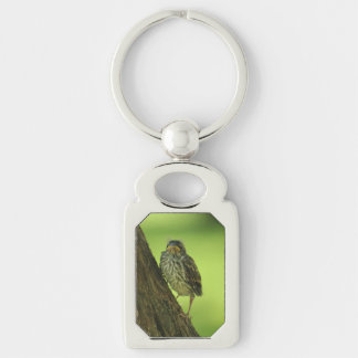 Fledging Chipping Sparrow Keychain