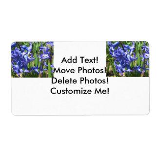 Fleur assez bleue de jardin de jacinthe étiquettes d'expédition