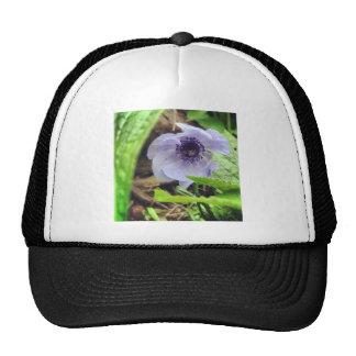 Fleur cachée casquettes