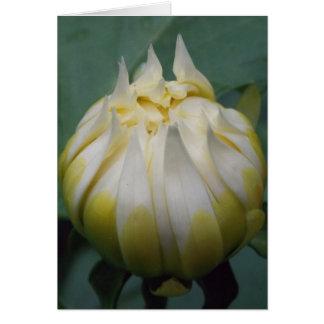 Fleur de dahlia carte de correspondance