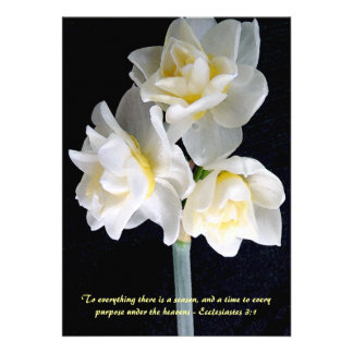 Fleur de Jonquil - 3:1 d'Ecclesiastes Invitation