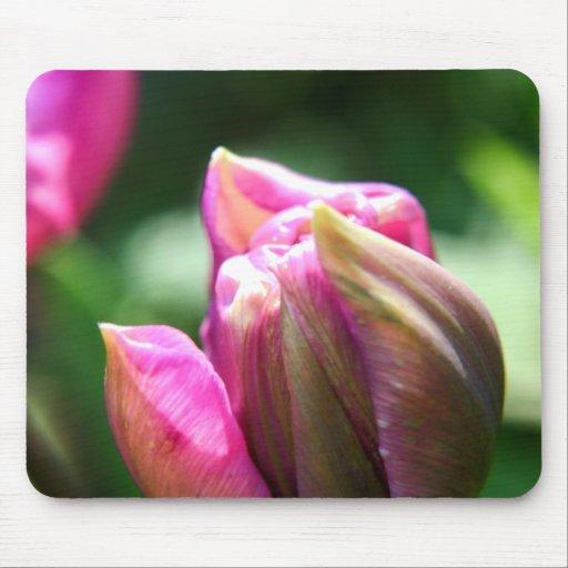 Fleur de tulipe de ressort tapis de souris