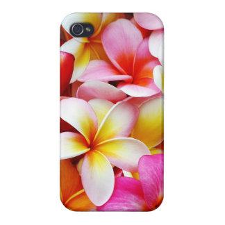 Fleur d'Hawaï de Frangipani de Plumeria customisée iPhone 4 Case