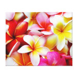 Fleur d'Hawaï de Frangipani de Plumeria customisée Toiles Tendues Sur Châssis