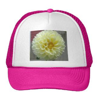Fleur jaune d angle de dahlia casquettes de camionneur