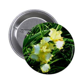 Fleur jaune et blanche d iris badge avec épingle