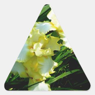 Fleur jaune et blanche d'iris sticker triangulaire