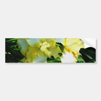 Fleur jaune et blanche d'iris autocollant de voiture