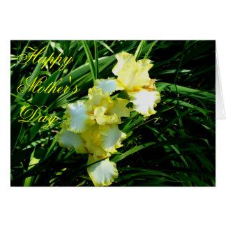 Fleur jaune et blanche d'iris cartes de vœux